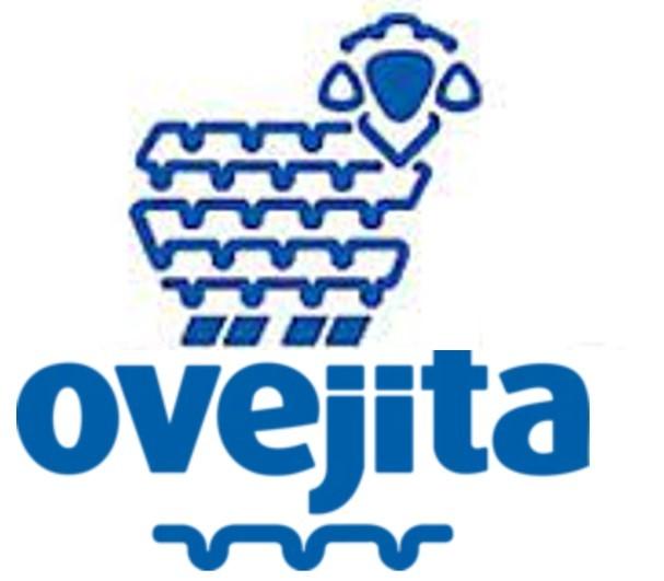 Ovejita